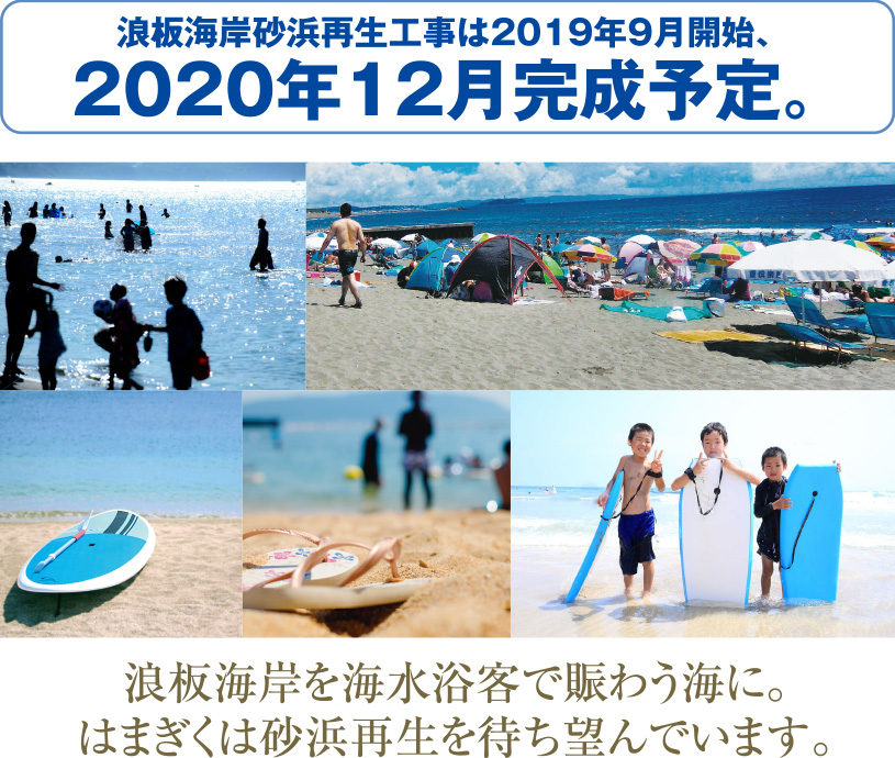 浪板海岸を海水浴客で賑わう海に。はまぎくは砂浜再生を待ち望んでいます。