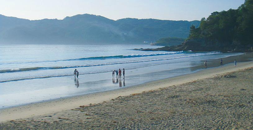 浪板海岸再生プロジェクト